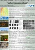 Coverbild Poster Ruehl et al. IWGP 2013